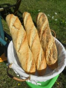 baguettes-traditionnelles-farine-Gruau-d-or